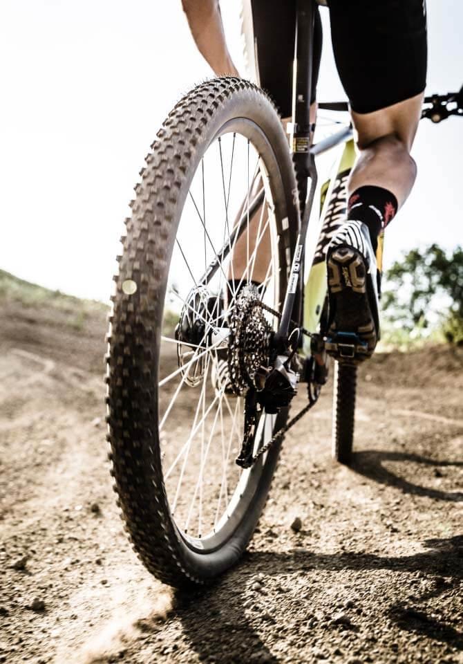 Back of mountain biker